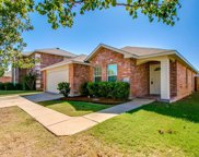 1724 Trego Drive, Fort Worth image