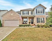 12810  Rusty Blackbird Way, Charlotte image