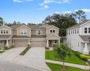 14701 Rocky Brook Drive, Tampa image