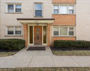 6769 North Olmsted Avenue Unit 1S, Chicago image