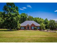 449  Farm Branch Drive, Fort Mill image