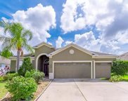 11422 Callaway Pond Drive, Riverview image