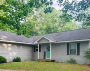 9163 Youker Road, Grawn image
