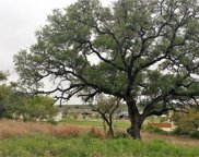 138 Emmanuelle Ct, Dripping Springs image