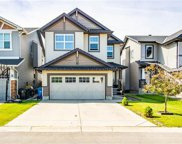 175 Skyview Shores Crescent Northeast, Calgary image