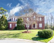 14208 Bald Cypress  Court, Huntersville image