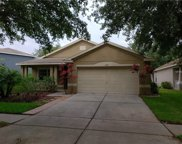 11607 Brookmore Way, Riverview image