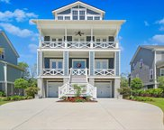 1475 Mossy Branch Way, Mount Pleasant image