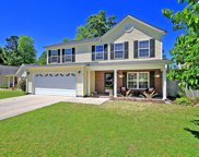 118 Willowbend Lane, Summerville image