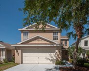 11435 Crestlake Village Drive, Riverview image