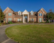 9306 S Hodgeson Rd, Gonzales image