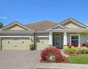 11882 Frost Aster Drive, Riverview image