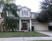 7964 Camden Woods Drive, Tampa image