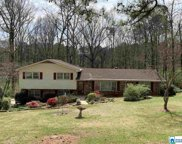 7361 Pinewood Dr, Trussville image