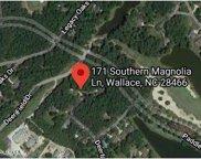 171 Southern Magnolia Lane, Wallace image