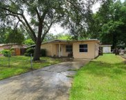 706 Flame Tree Road, Tampa image