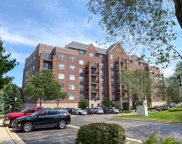 410 West Mahogany Court Unit 608, Palatine image