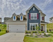 1663  Sassafras Court, Fort Mill image