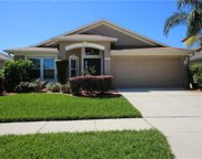10435 Hunters Haven Boulevard, Riverview image