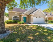 12941 Terrace Springs Drive, Temple Terrace image