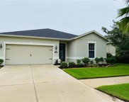 11220 Spring Point Circle, Riverview image