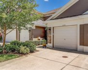 11221 Windsor Place Circle, Tampa image