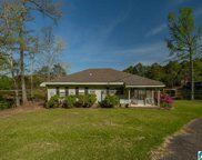 175 Mountain View Lake, Odenville image
