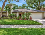 12104 Cypress Hollow Place, Tampa image
