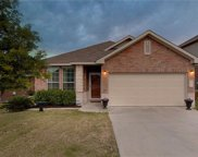 158 Willow Leaf Ln, Buda image