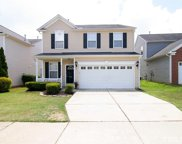 305 Cline Falls Drive, Holly Springs image