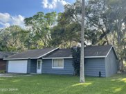 1016 W Indian Oaks, Holly Hill image