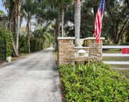 10536 COUNTY RD 13  N, St Augustine image