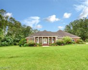 425 Grand Bay-wilmer, Mobile image