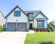 424 Blackberry Blvd, Springville image