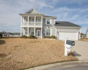 520 Box Turtle Ct., Myrtle Beach image