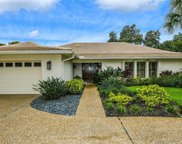 5104 Flicker Field Circle, Sarasota image