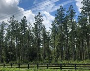LOT 3 GRIFFIN ROAD, Callahan image