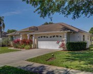 578 Pine Ranch East Road, Osprey image