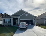 347 Cypress Springs Way, Little River image