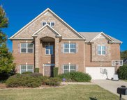 124 Wild Meadow Drive, Simpsonville image