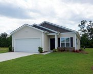 359 Angler Ct., Conway image