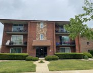 8136 169Th Street Unit #3E, Tinley Park image