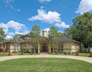 3629 SILVERY LN, Jacksonville image