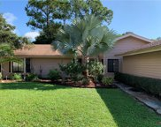 15361 Sam Snead Ln, North Fort Myers image