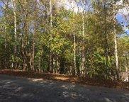 Lot 62 Walnut Run  Dr, Hardy image