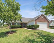 11623  Black Maple Avenue, Charlotte image