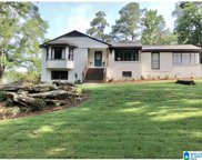 304 Cherokee Dr, Trussville image