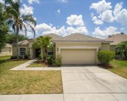 11812 Summer Springs Drive, Riverview image
