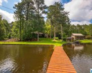 155 Mountain View Lake, Odenville image