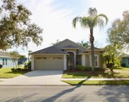 317 Fountainview Circle, Oldsmar image